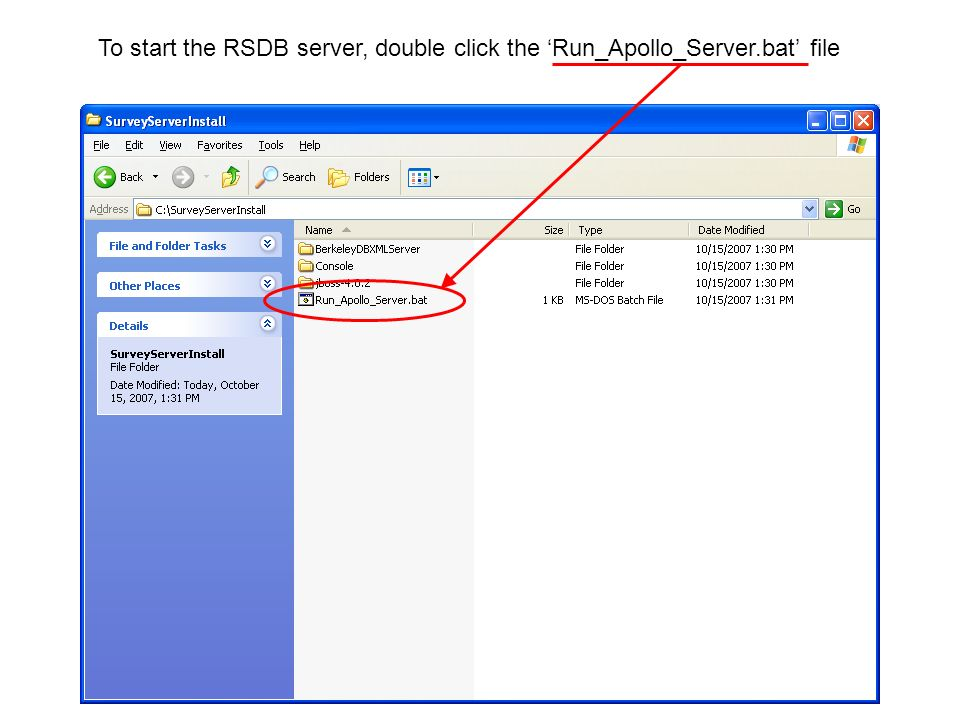 To start the RSDB server, double click the Run_Apollo_Server.bat file