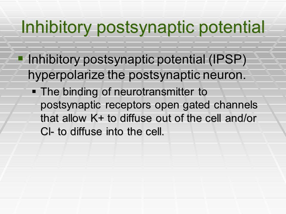 Inhibitory postsynaptic potential Inhibitory postsynaptic potential (IPSP) hyperpolarize the postsynaptic neuron. Inhibitory postsynaptic potential (I