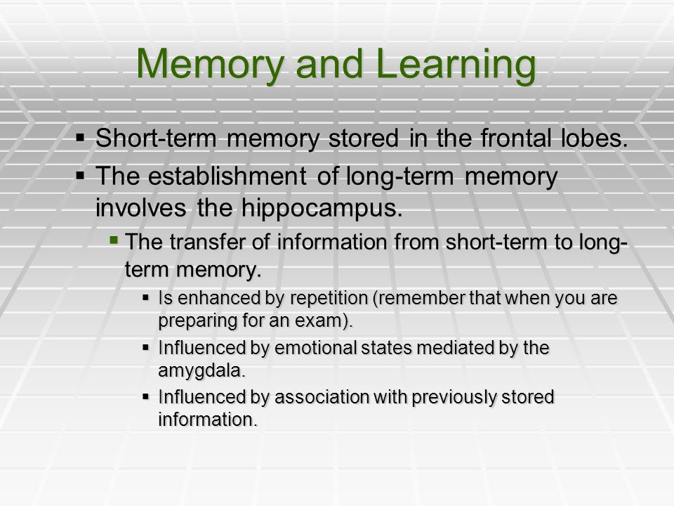 Memory and Learning Short-term memory stored in the frontal lobes. Short-term memory stored in the frontal lobes. The establishment of long-term memor