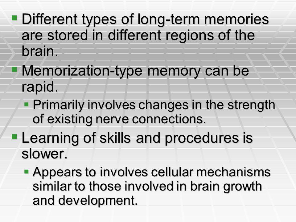Different types of long-term memories are stored in different regions of the brain. Different types of long-term memories are stored in different regi