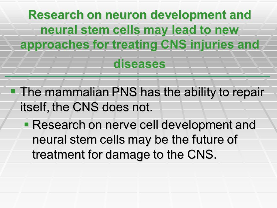 The mammalian PNS has the ability to repair itself, the CNS does not. The mammalian PNS has the ability to repair itself, the CNS does not. Research o