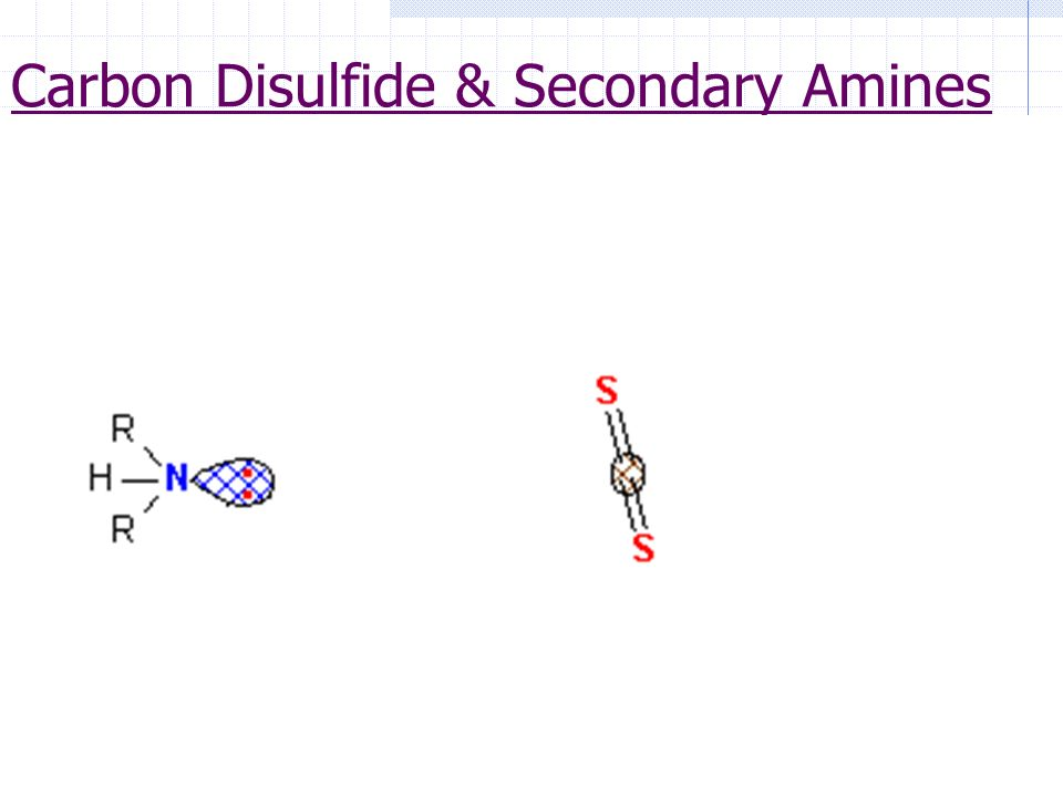 3 Carbon Disulfide & Secondary Amines