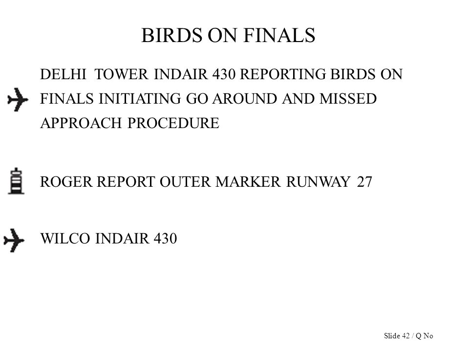 BIRDS ON FINALS DELHI TOWER INDAIR 430 REPORTING BIRDS ON FINALS INITIATING GO AROUND AND MISSED APPROACH PROCEDURE ROGER REPORT OUTER MARKER RUNWAY 2