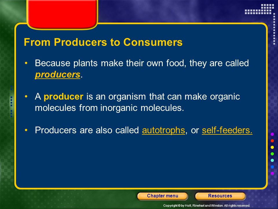 Copyright © by Holt, Rinehart and Winston. All rights reserved. ResourcesChapter menu From Producers to Consumers Because plants make their own food,