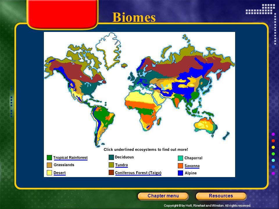 Copyright © by Holt, Rinehart and Winston. All rights reserved. ResourcesChapter menu Biomes