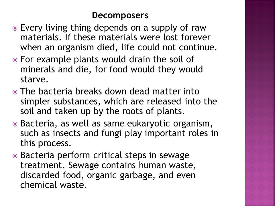 Decomposers Every living thing depends on a supply of raw materials. If these materials were lost forever when an organism died, life could not contin
