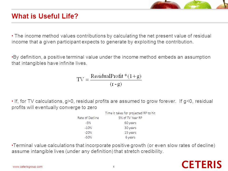 www.ceterisgroup.com What is Useful Life.