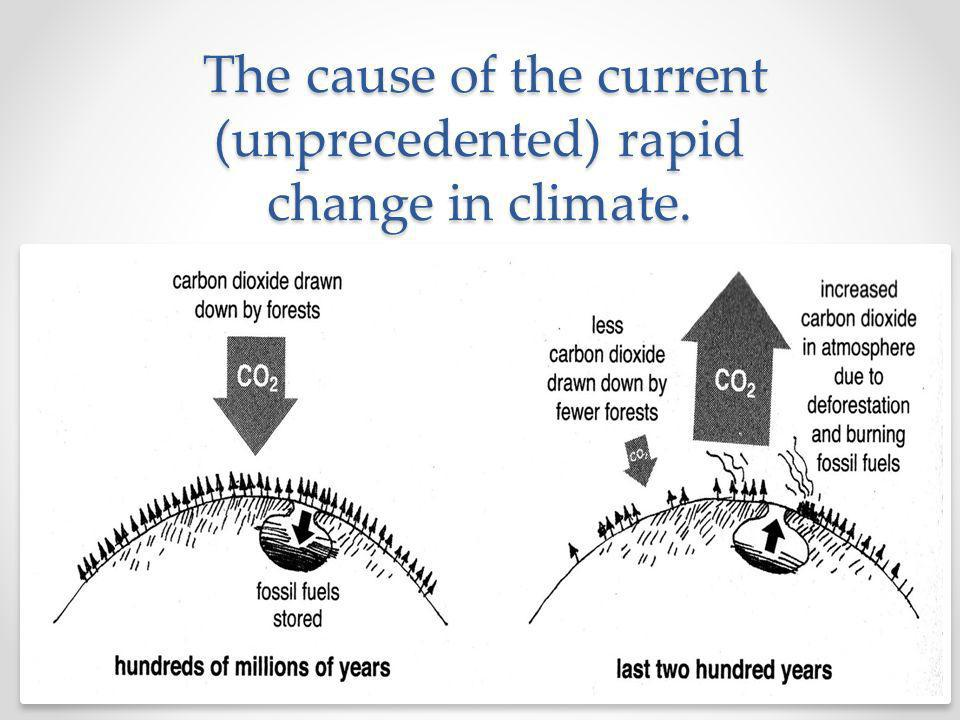 The cause of the current (unprecedented) rapid change in climate.