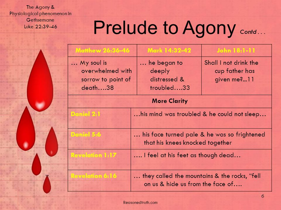 The Agony & Physiological phenomenon in Gethsemane Luke 22:39-46 Reasonedtruth.com 6 Prelude to Agony Contd...