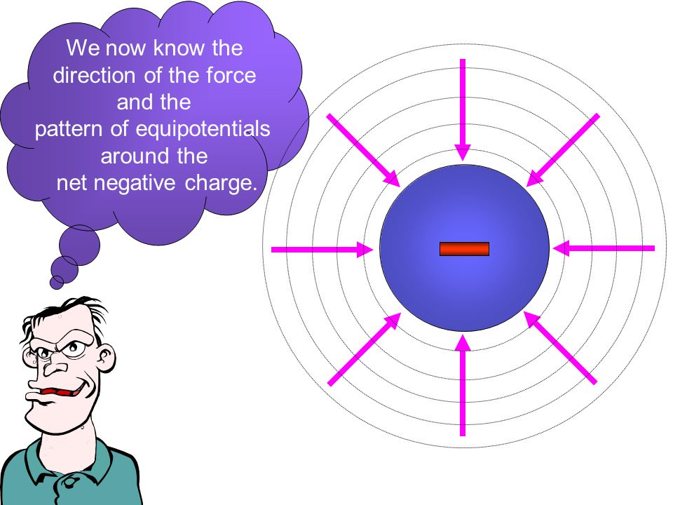 We now know the direction of the force and the pattern of equipotentials around the net negative charge.