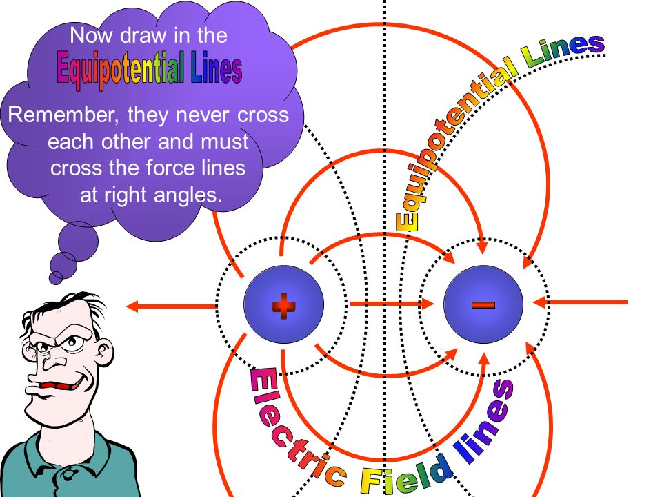 Now draw in the Remember, they never cross each other and must cross the force lines at right angles.