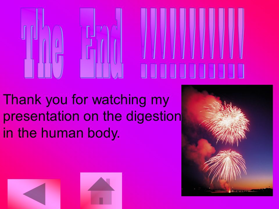 Thank you for watching my presentation on the digestion in the human body.