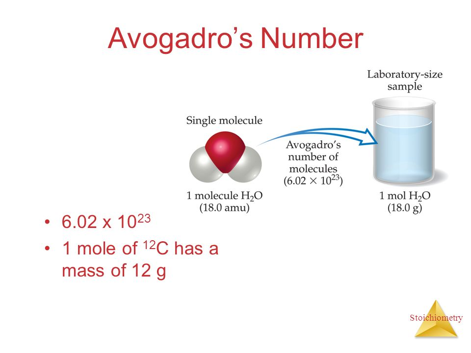 Stoichiometry Avogadros Number 6.02 x 10 23 1 mole of 12 C has a mass of 12 g