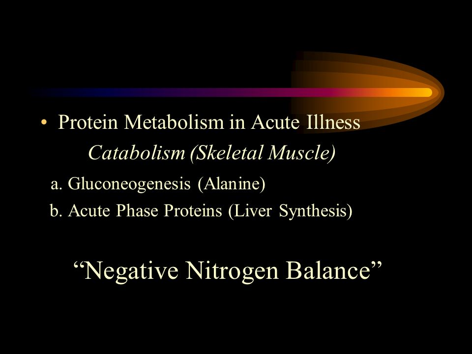 Protein Metabolism in Acute Illness Catabolism (Skeletal Muscle) a. Gluconeogenesis (Alanine) b. Acute Phase Proteins (Liver Synthesis) Negative Nitro