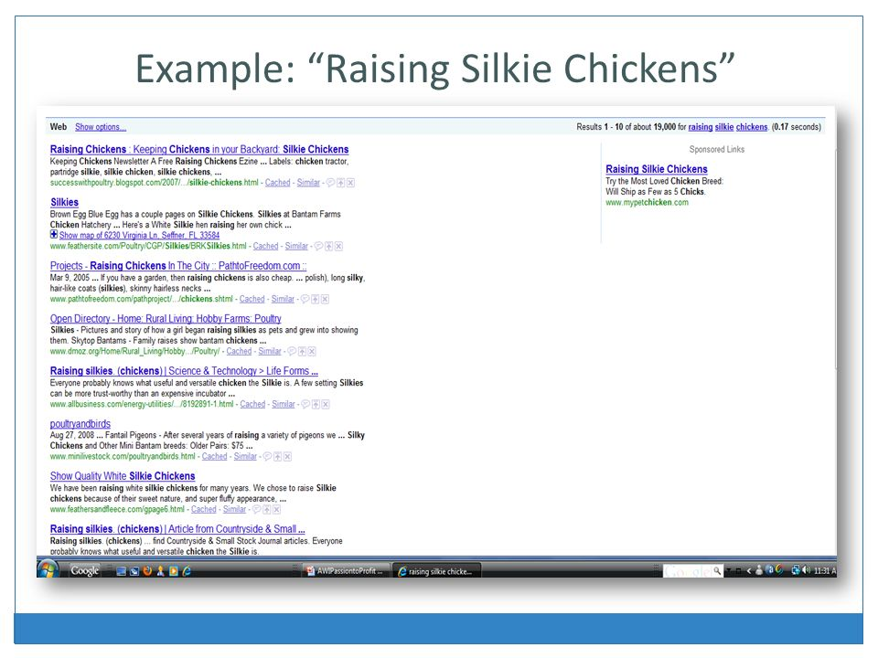 Example: Raising Silkie Chickens