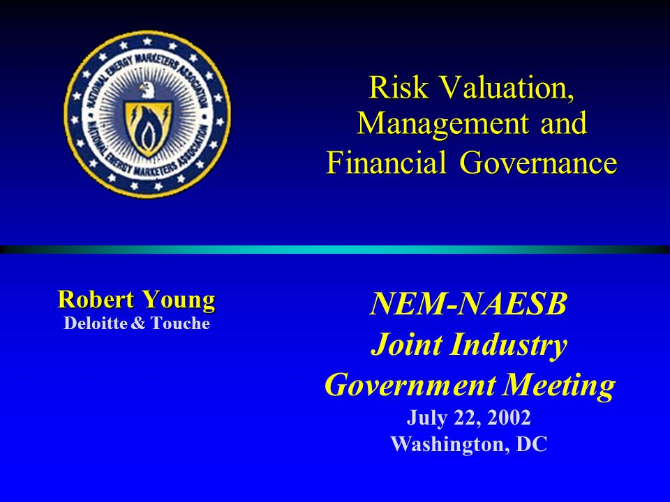 Risk Valuation, Management and Financial Governance Robert Young Deloitte & Touche NEM-NAESB Joint Industry Government Meeting July 22, 2002 Washington, DC