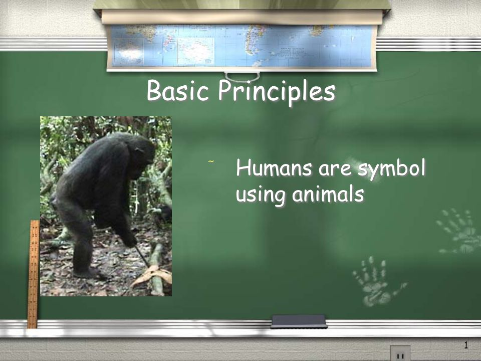 1 Basic Principles / Humans are symbol using animals