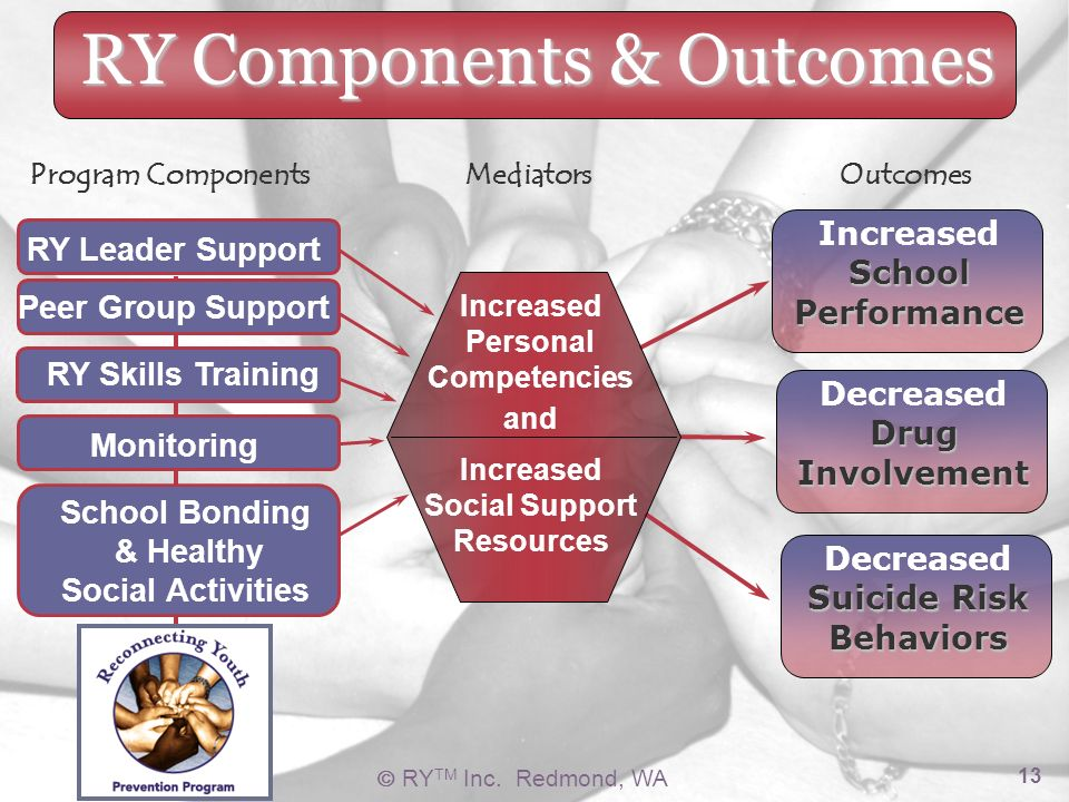RY TM Inc. Redmond, WA 13 RY Components & Outcomes Increased Personal Competencies and Increased Social Support Resources RY Teacher Support RY Leader
