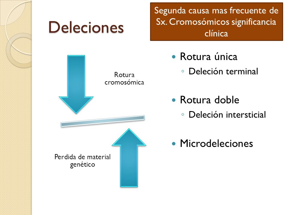Deleciones Rotura cromosómica Perdida de material genético Rotura única Deleción terminal Rotura doble Deleción intersticial Microdeleciones Segunda c