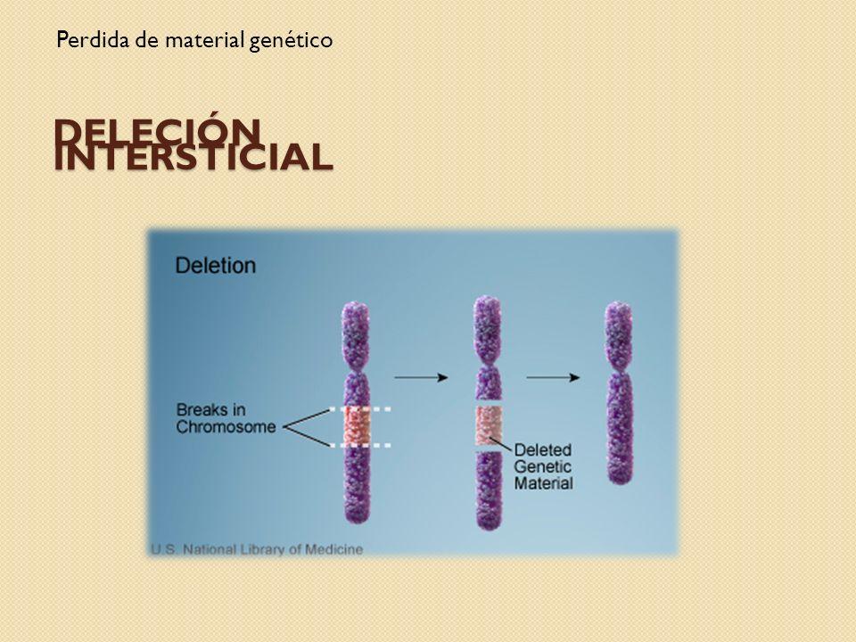 DELECIÓN INTERSTICIAL Perdida de material genético