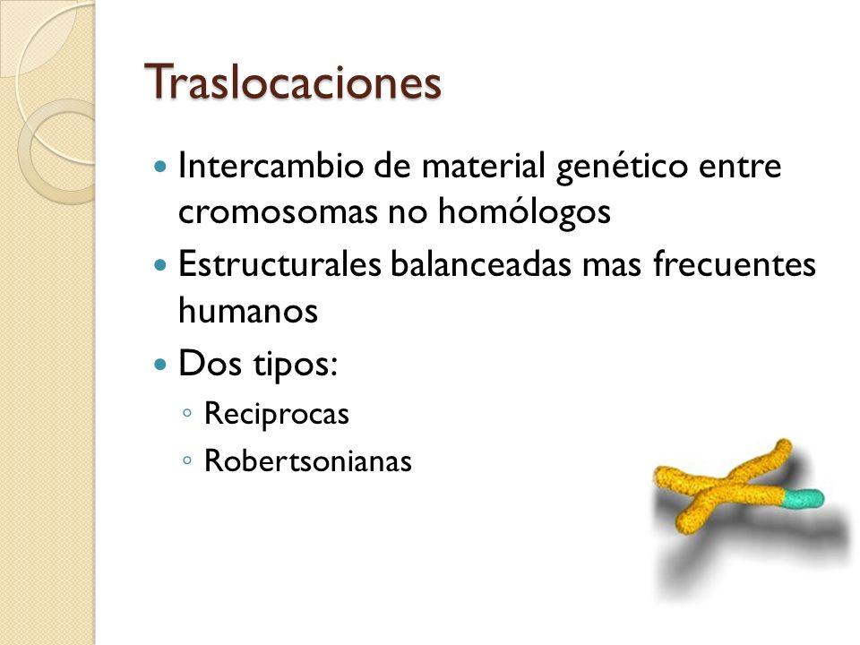 Traslocaciones Intercambio de material genético entre cromosomas no homólogos Estructurales balanceadas mas frecuentes humanos Dos tipos: Reciprocas R