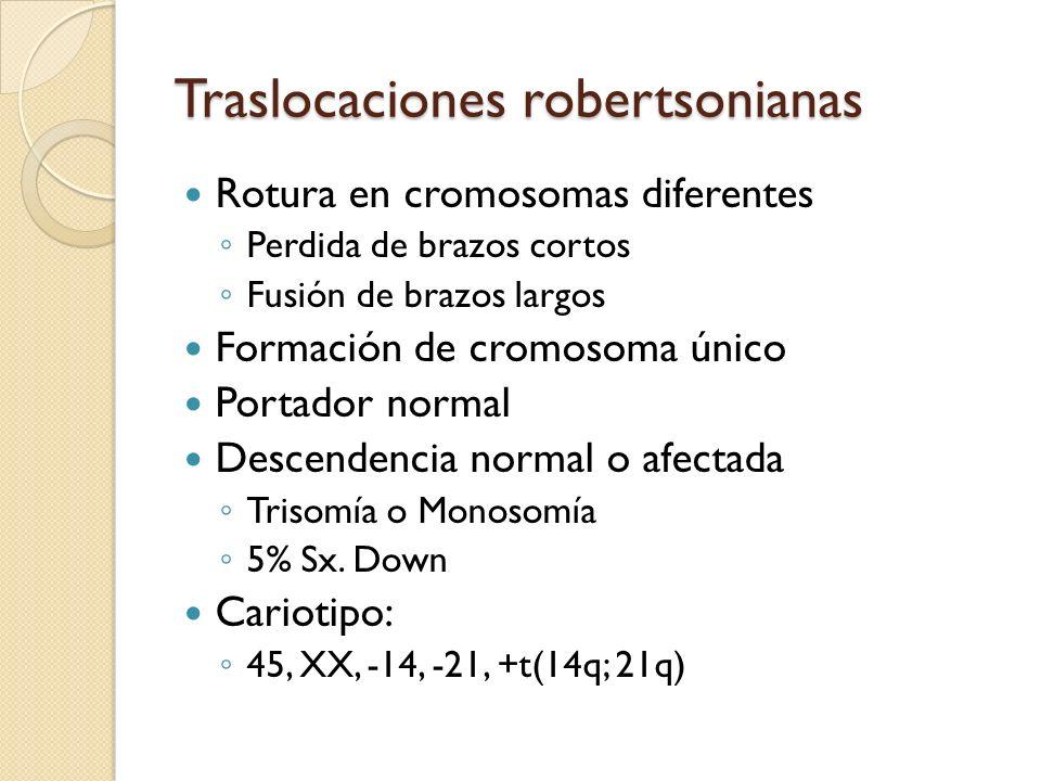 Traslocaciones robertsonianas Rotura en cromosomas diferentes Perdida de brazos cortos Fusión de brazos largos Formación de cromosoma único Portador n