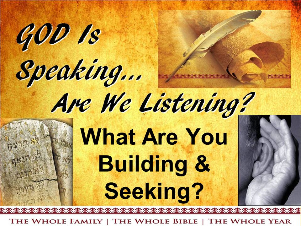 What Are You Building & Seeking