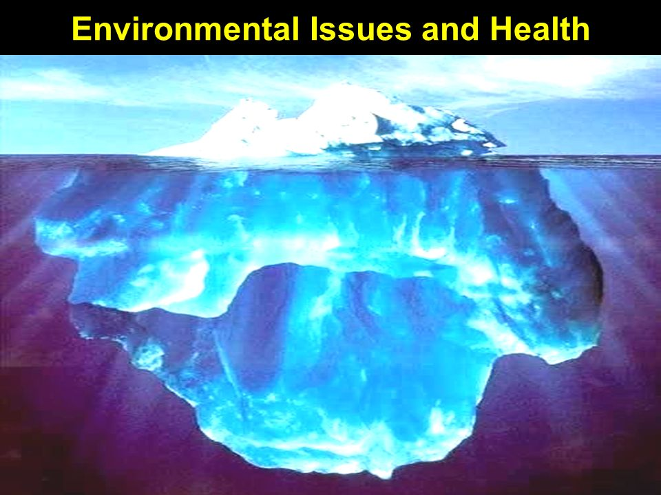 Environmental Issues and Health