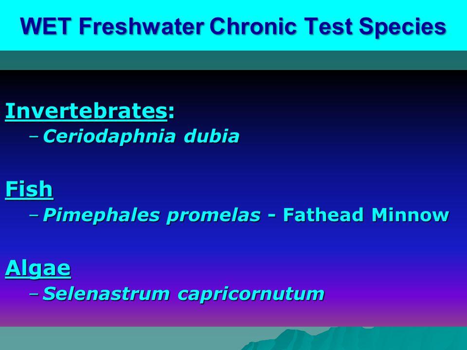 WET Freshwater Chronic Test Species Invertebrates: –Ceriodaphnia dubia Fish –Pimephales promelas - Fathead Minnow Algae –Selenastrum capricornutum