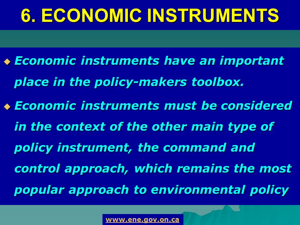 Economic instruments have an important place in the policy-makers toolbox.