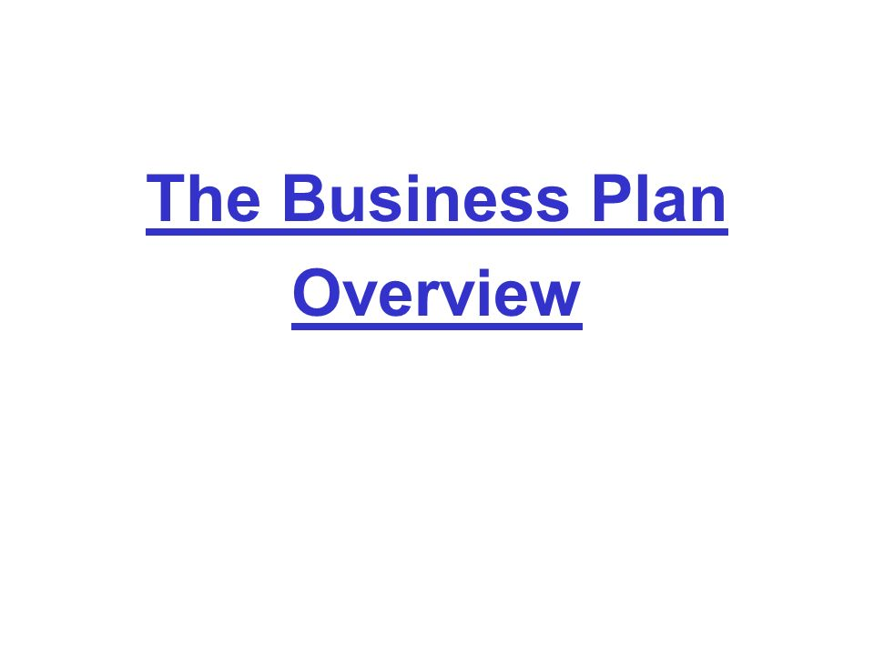 The Business Plan Overview