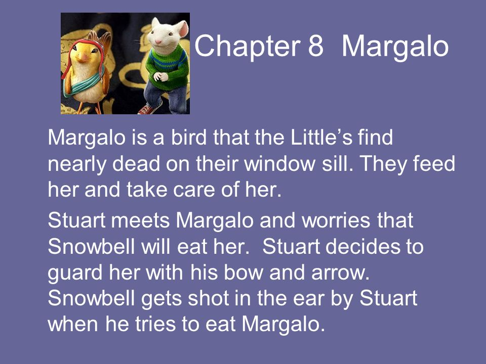 Chapter 8 Margalo Margalo is a bird that the Littles find nearly dead on their window sill. They feed her and take care of her. Stuart meets Margalo a
