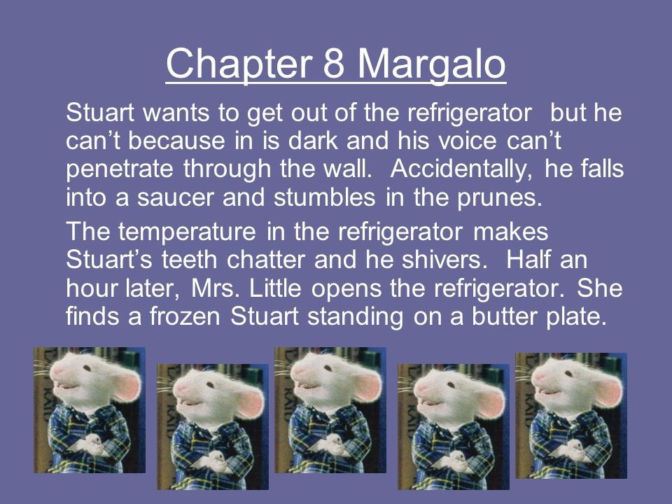 Chapter 8 Margalo Stuart wants to get out of the refrigerator but he cant because in is dark and his voice cant penetrate through the wall. Accidental