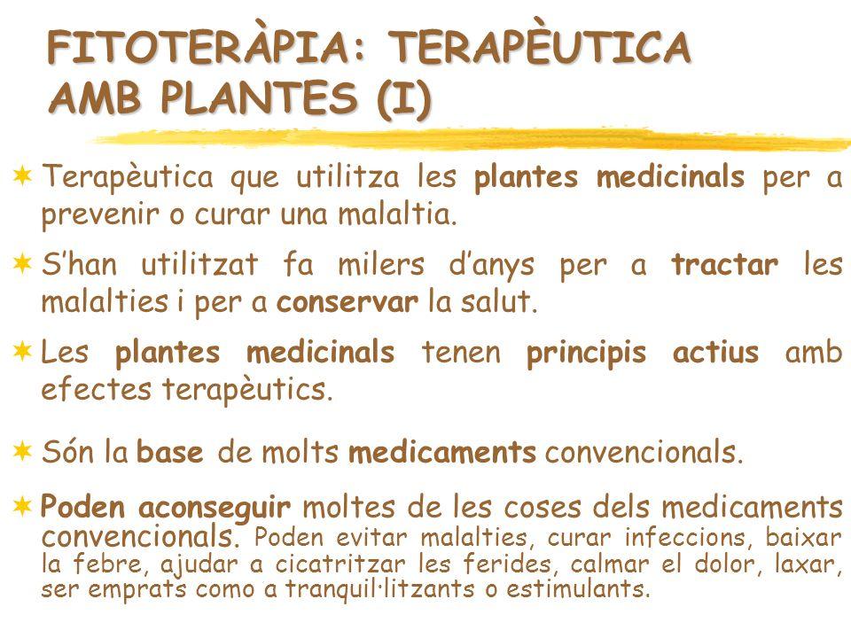 FITOTERÀPIA: TERAPÈUTICA AMB PLANTES (I) Terapèutica que utilitza les plantes medicinals per a prevenir o curar una malaltia. Shan utilitzat fa milers