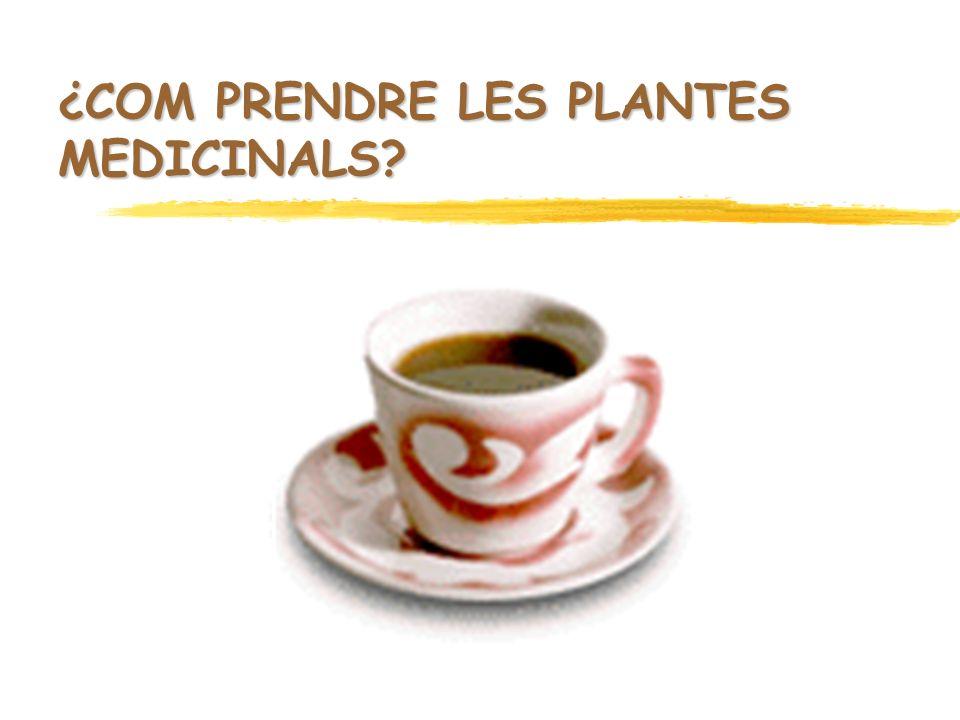 ¿COM PRENDRE LES PLANTES MEDICINALS?