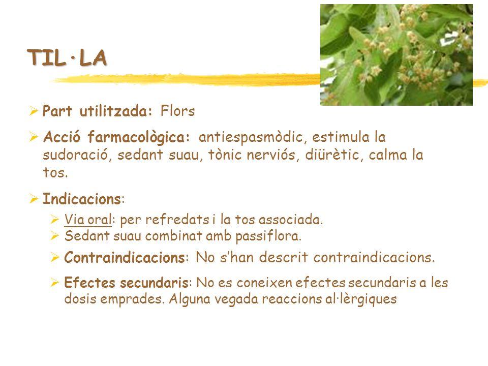 TIL·LA Part utilitzada: Flors Acció farmacològica: antiespasmòdic, estimula la sudoració, sedant suau, tònic nerviós, diürètic, calma la tos. Indicaci