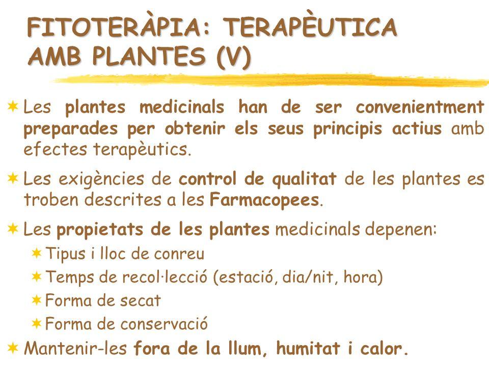 FITOTERÀPIA: TERAPÈUTICA AMB PLANTES (V) Les plantes medicinals han de ser convenientment preparades per obtenir els seus principis actius amb efectes