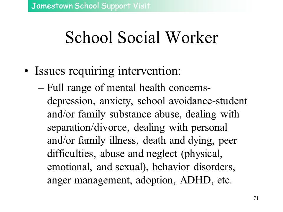 Jamestown School Support Visit 71 School Social Worker Issues requiring intervention: –Full range of mental health concerns- depression, anxiety, scho