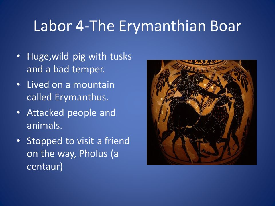 Labor 4-The Erymanthian Boar Huge,wild pig with tusks and a bad temper. Lived on a mountain called Erymanthus. Attacked people and animals. Stopped to