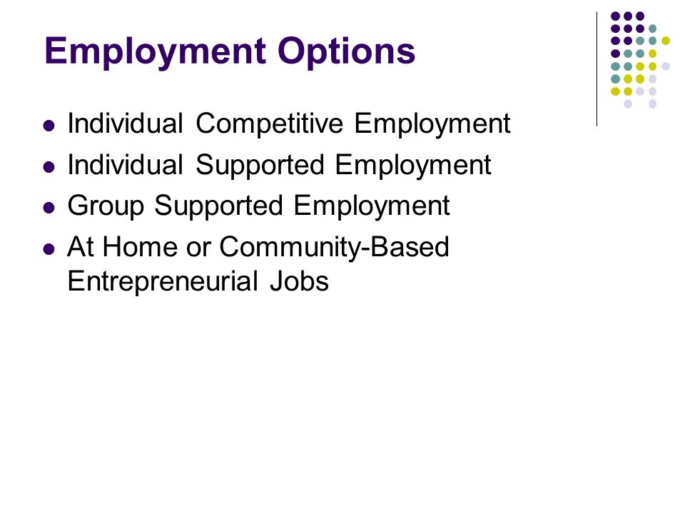Employment Options Individual Competitive Employment Individual Supported Employment Group Supported Employment At Home or Community-Based Entrepreneu