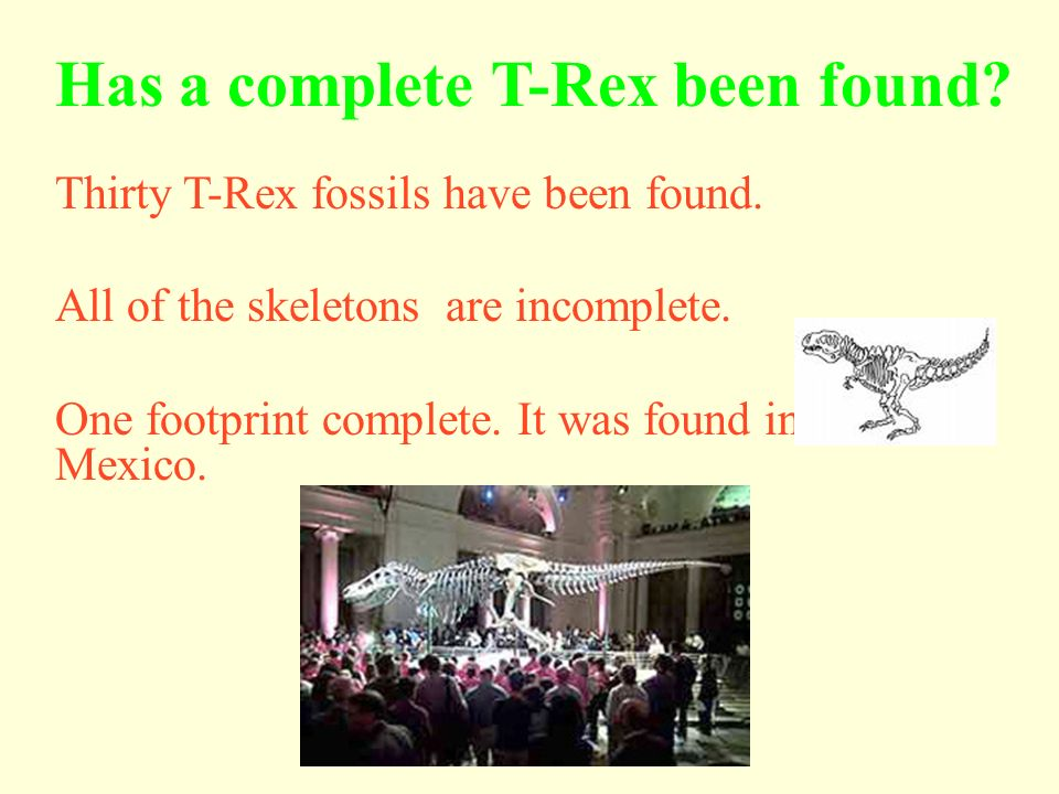 Where Did T-Rex Live? In the United States in Montana, Texas, Utah, Wyoming and in Arizona. In Asia In Canada