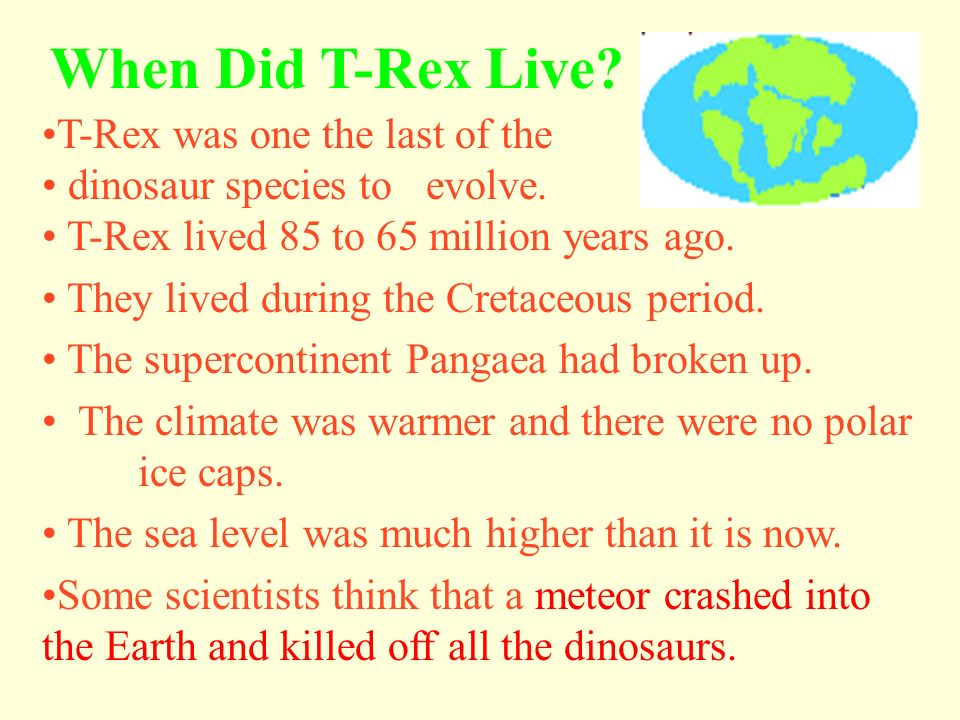The jaw was 4 feet wide and six feet long. T-Rex had a huge head with large, pointed, teeth.
