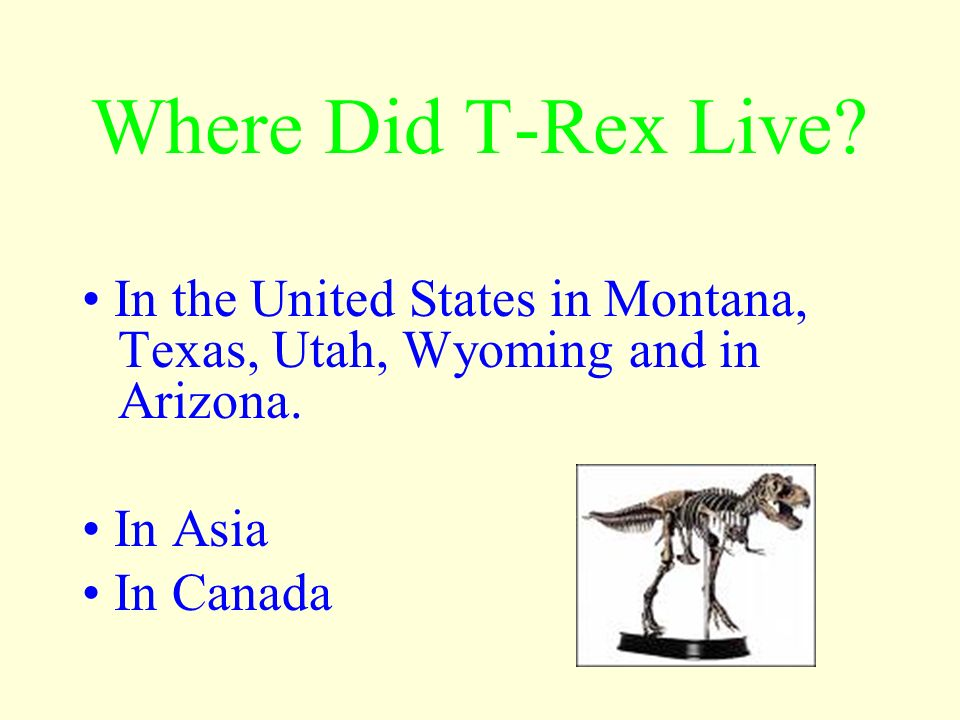 T-Rex was one the last of the dinosaur species to evolve. T-Rex lived 85 to 65 million years ago. They lived during the Cretaceous period. The superco