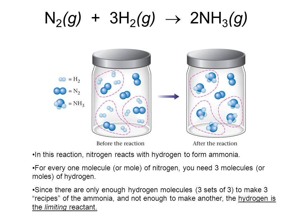 N 2 (g) + 3H 2 (g) 2NH 3 (g) In this reaction, nitrogen reacts with hydrogen to form ammonia. For every one molecule (or mole) of nitrogen, you need 3