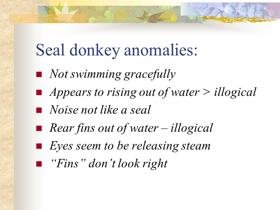 Example 1 seal donkey in ocean moving, swimming. splashing making a noise (bark ) therefore alive.