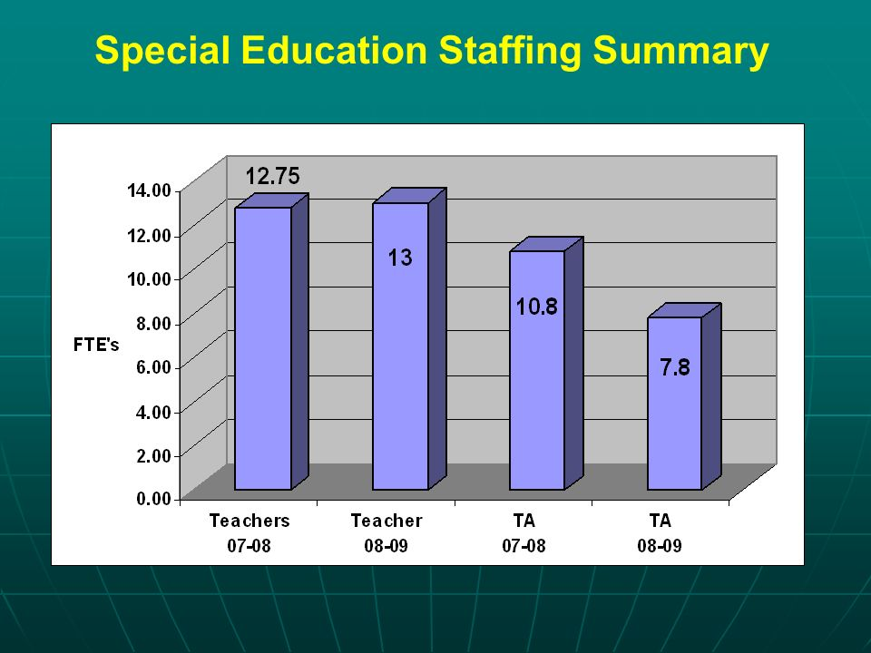 Special Education Staffing Summary