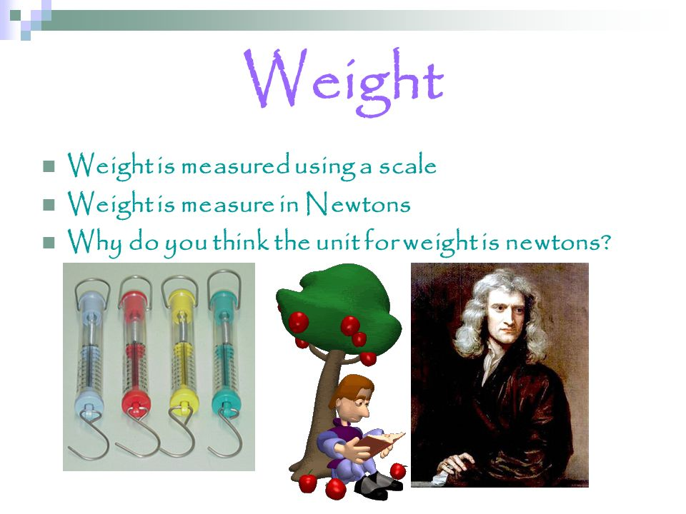 Weight Weight is measured using a scale Weight is measure in Newtons Why do you think the unit for weight is newtons?