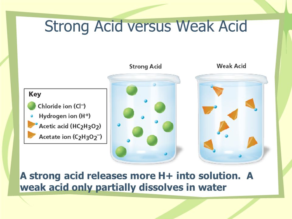 Strong Acid versus Weak Acid A strong acid releases more H+ into solution. A weak acid only partially dissolves in water