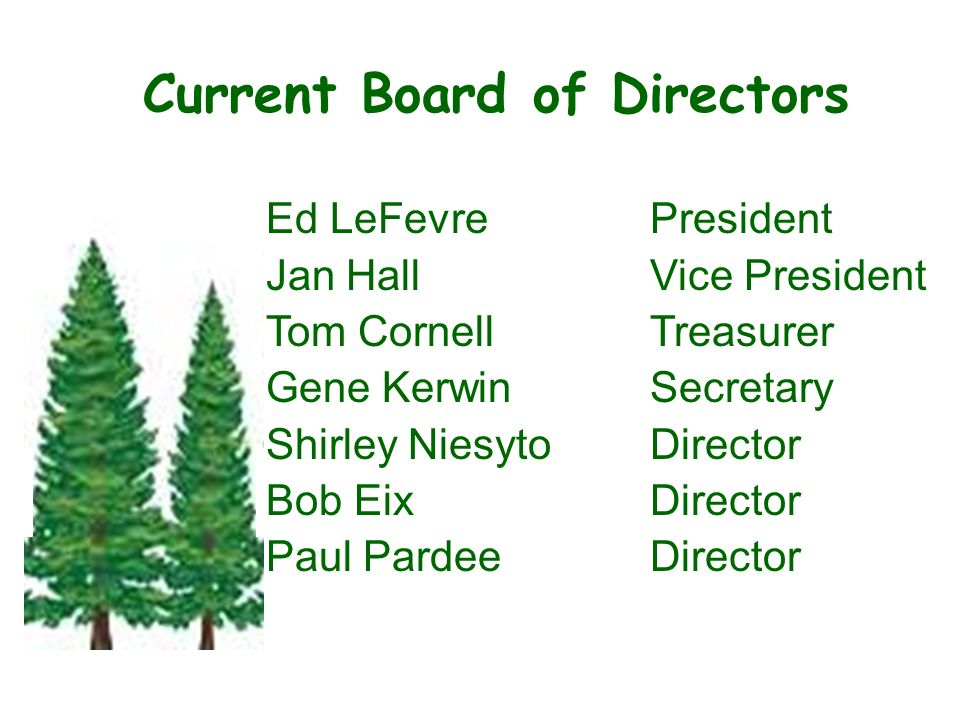 Current Board of Directors Ed LeFevrePresident Jan HallVice President Tom CornellTreasurer Gene KerwinSecretary Shirley Niesyto Director Bob EixDirector Paul PardeeDirector State of the Association - –Roof Replaceme nts –Unit painting –Deck staining –Concrete replaceme nt –Changes for 2010