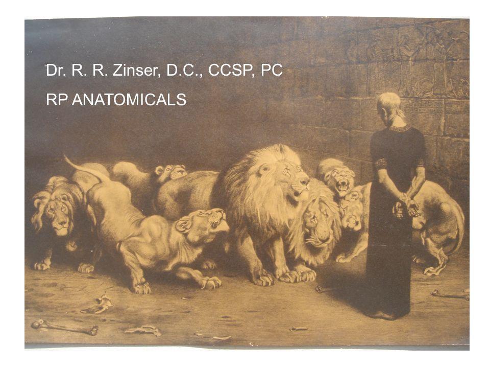 Dr. R. R. Zinser, D.C., CCSP, PC RP ANATOMICALS